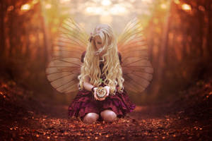 Beautiful Fairy by Tracy59