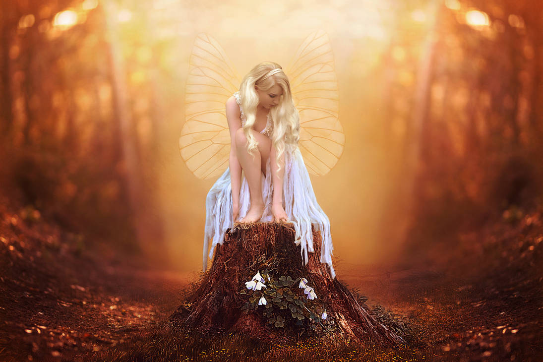 Beautiful Forest Fairy