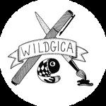 wildgica's DeviantID 5