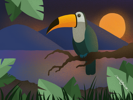 Toucan by wildgica