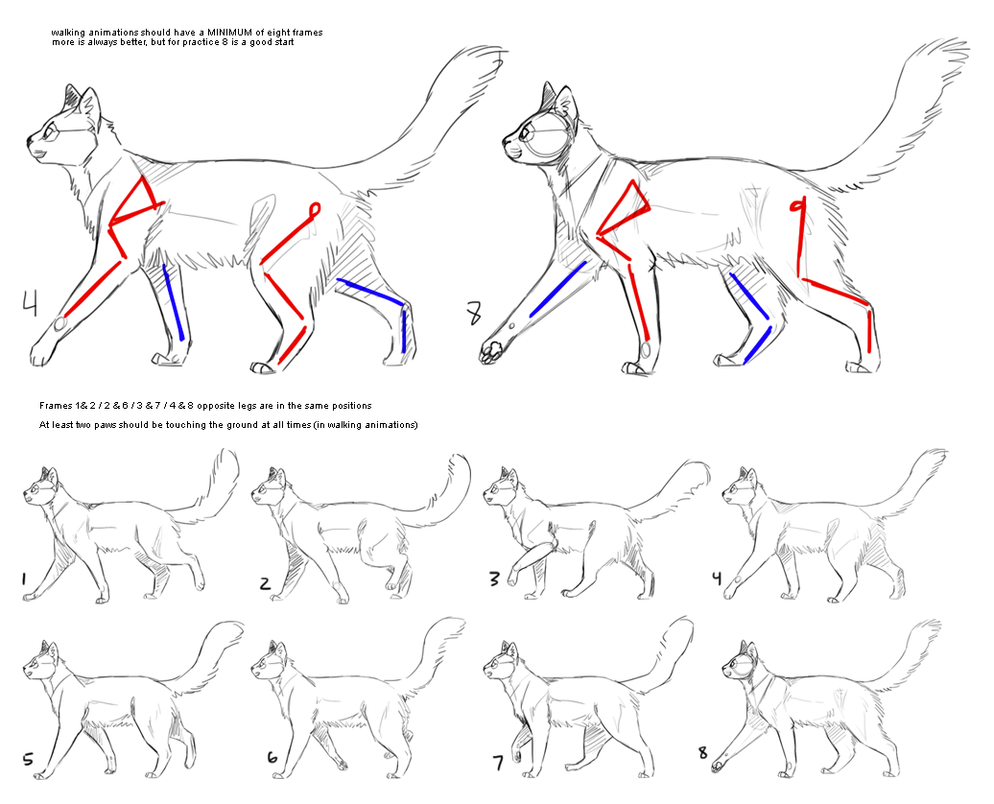Cat Walking Animation Reference