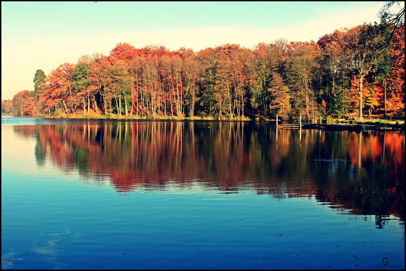 Autumn Scenery by Redsun182