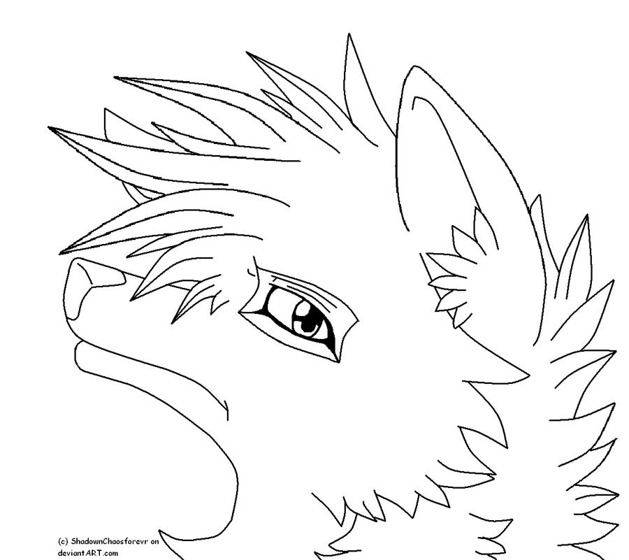 Line Drawing Wolf Head : Wolf head drawing outline