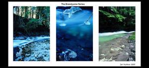 The BrandyWine Series by spinklefinkle