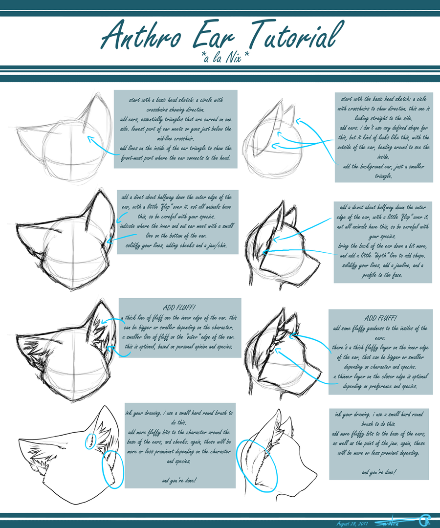 Anthro ear tutorial by allinix on deviantart for Good drawing tutorials for beginners