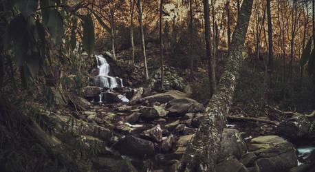 Laurel Falls Around the Bend