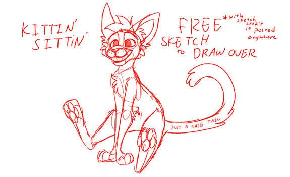 Free Sketch - Kittin Sittin
