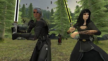 Vaylin and the Commander by GmodJo