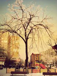 winter playground by horatziu1977