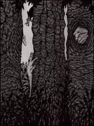 Dragons by darkallegiance666