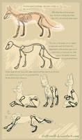 fox doodle tutorial by griffsnuff