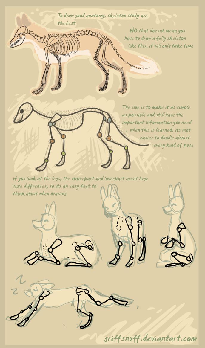 fox doodle tutorial by griffsnuff on DeviantArt