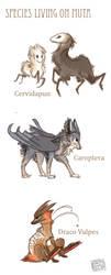 Specie designs by griffsnuff
