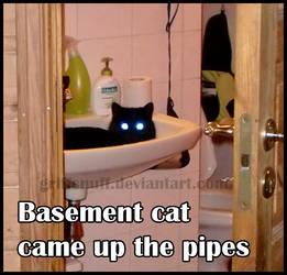 Basement cat by griffsnuff