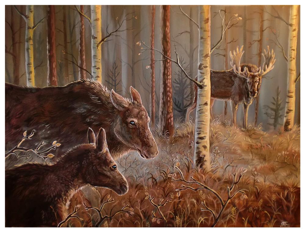 Skogens  Konge by griffsnuff