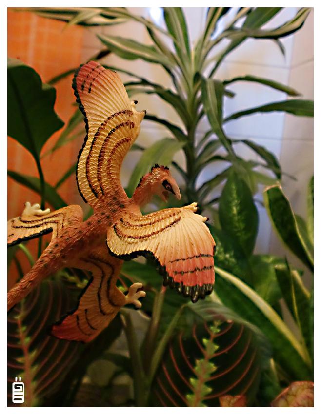 Microraptor by griffsnuff