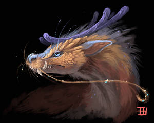 Northen dragon