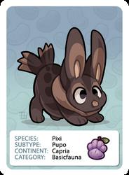 GIC - Griffian  Info Card - Pixi Pupo [Common] by griffsnuff