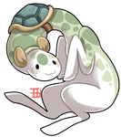 #9 Plesiopod - Turtle