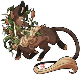 #172 Terrakami - River Otter