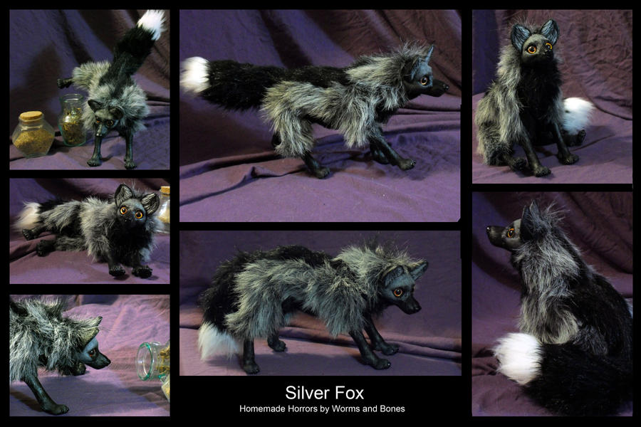 Silver Fox by WormsandBones