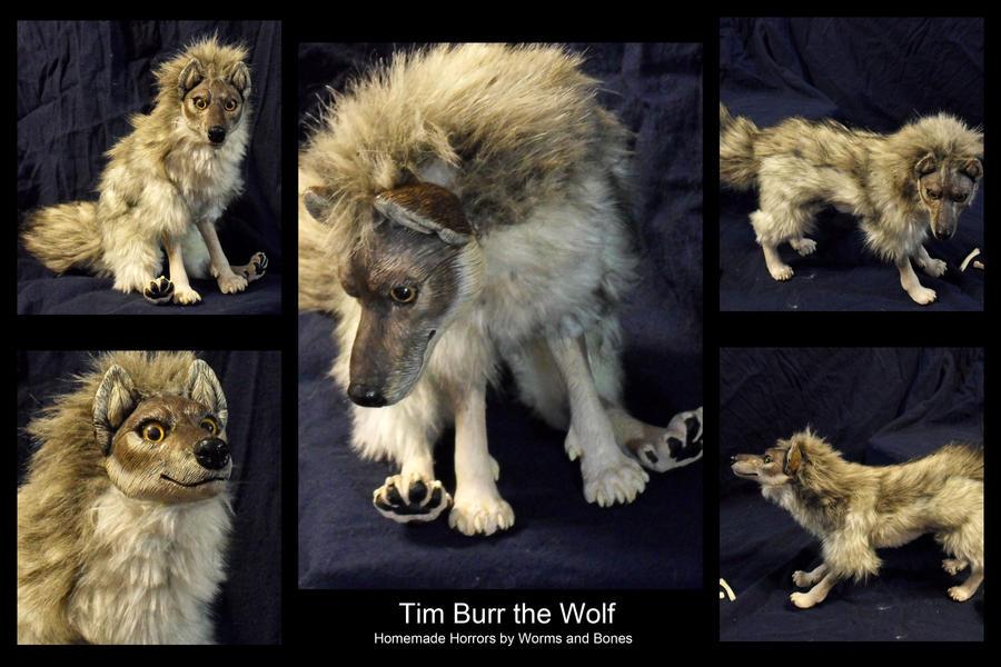 Tim Burr by WormsandBones