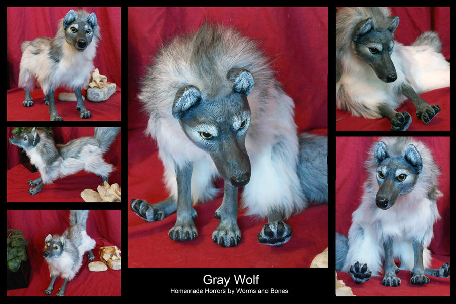 Gray Wolf by WormsandBones
