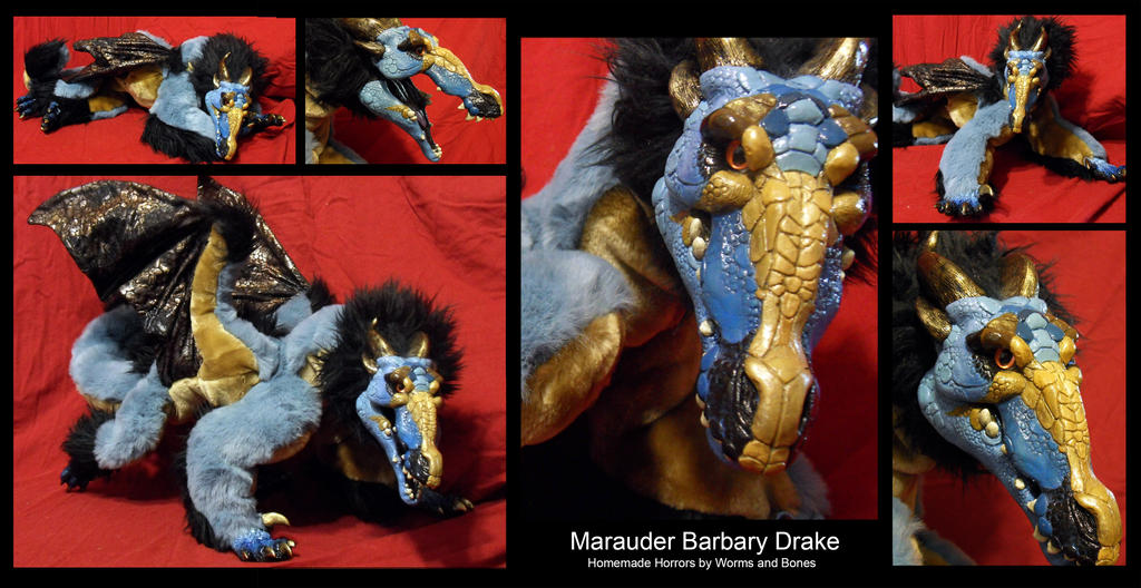 Barbary Drake - Marauder by WormsandBones