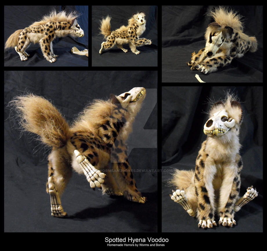 Poseable Spotted Hyena Voodoo by WormsandBones