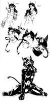 Kitten transform