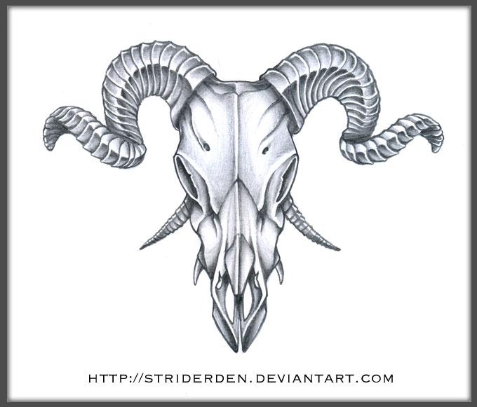 Evil Goat Skull Drawing