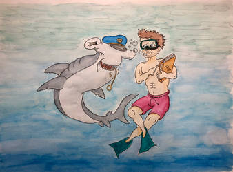 Shark and diving director