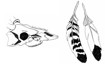 Skull and Feathers Study by SmileyDoppelganger