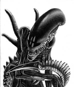 H.R. Giger's Xenomorph