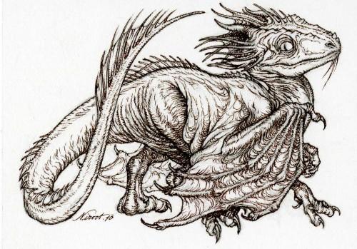 Aaron's Dragon by Himmapaan