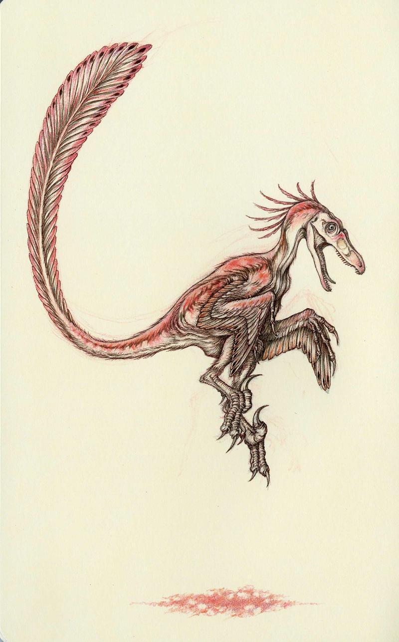 Pink Velociraptor by Himmapaan