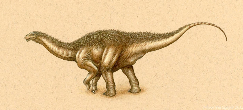 Fuzzy Apatosaurus Juvenile by Himmapaan
