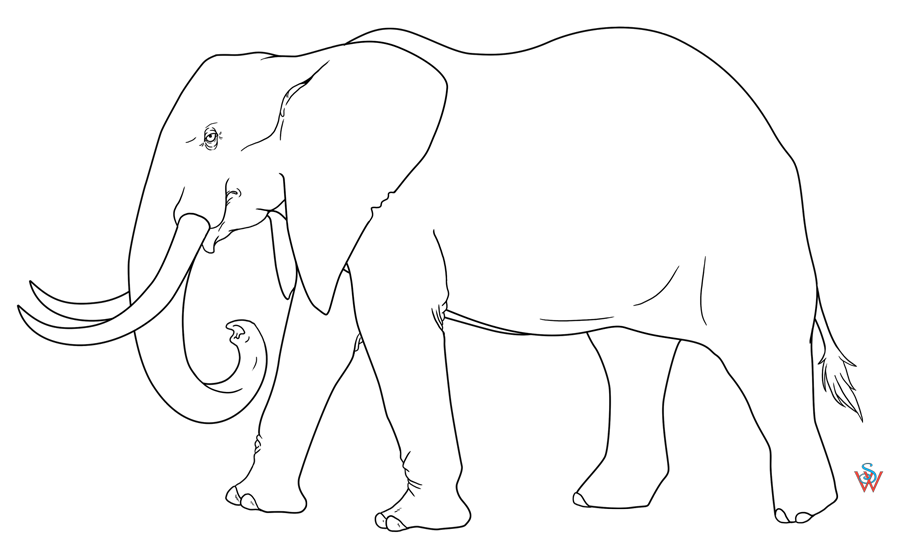 Line Art Elephant : Sitting chibi coloring pages