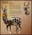 VoS: Sadija Reference Sheet