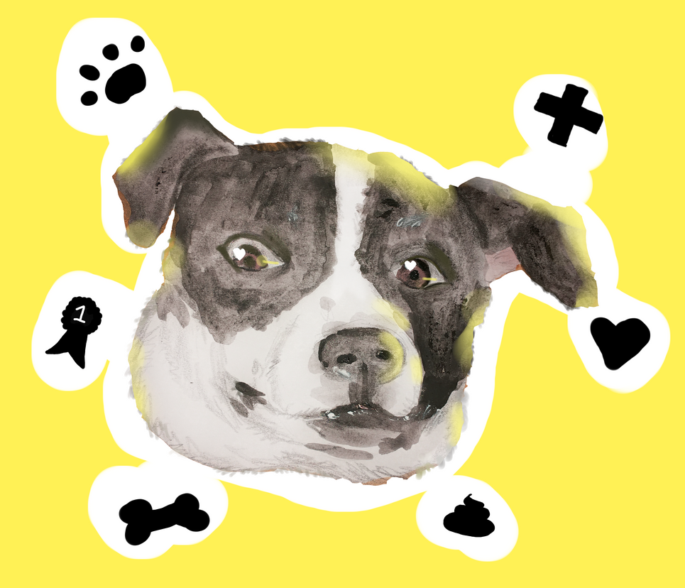 My cute doge by Nekomimi-Chan00