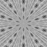 Grey Supernova