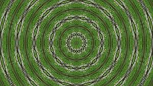 The Symbol of Wild Green I