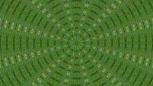 The Symbol of Wild Green II