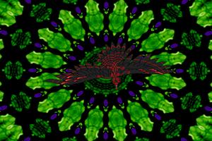 The Phoenix of Takansivlata III by Jakeukalane
