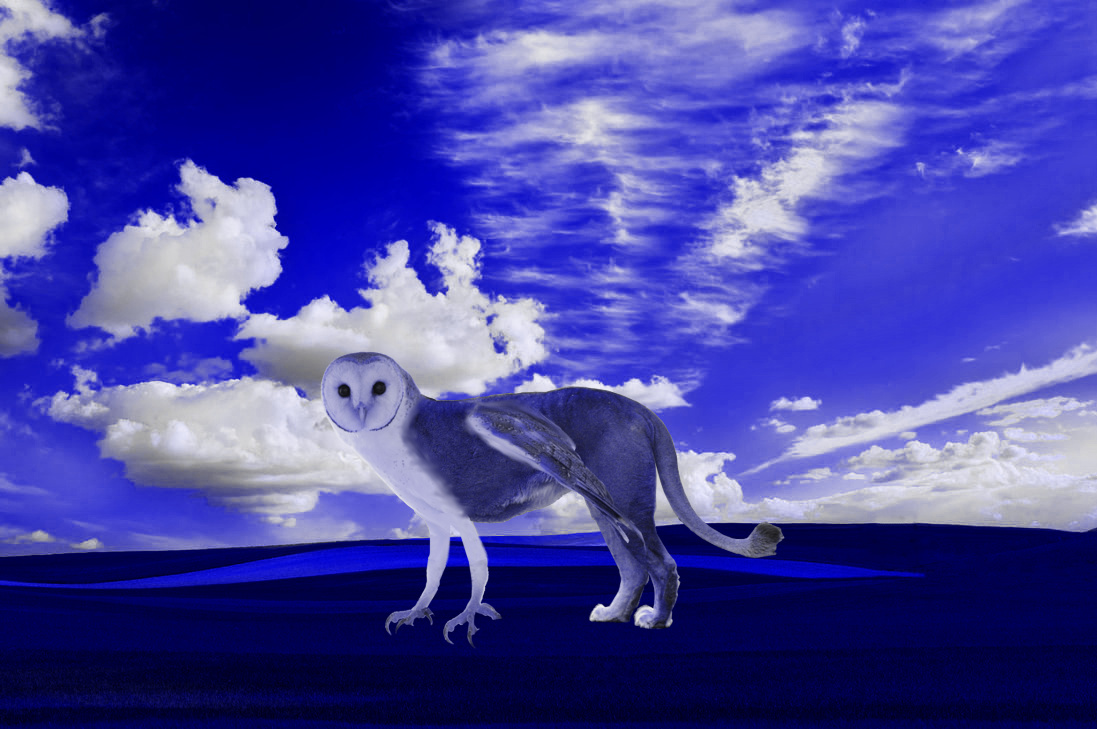 A Griffin in the Absurd World of Blue by Jakeukalane