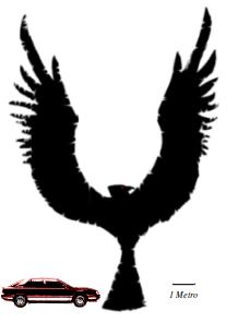 comparativa tamaño fénix negros con humano