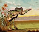 The Rhapsodist Frog