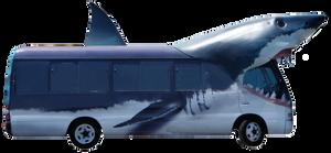 Sharkbus