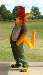 Dingaroo at the park by Espilonarge