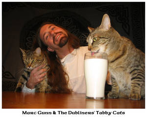 The Dubliners' Tabby Cats